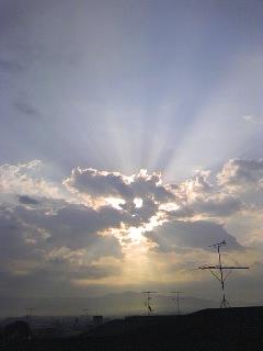 22.11.8陽光.jpg