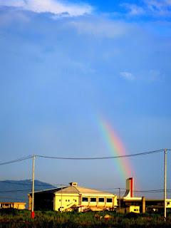 24.8.7虹.jpg